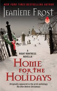 Home for the Holidays feel the book